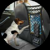Pet Barriers